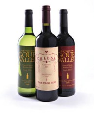 wine_04-1-copy.jpg