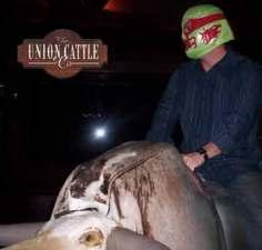 Mexican Wrestler Bull Rider