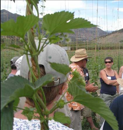 Organic Hops Workshop at CSU, August 2008